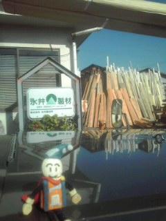 奈良にピノコと木材を。